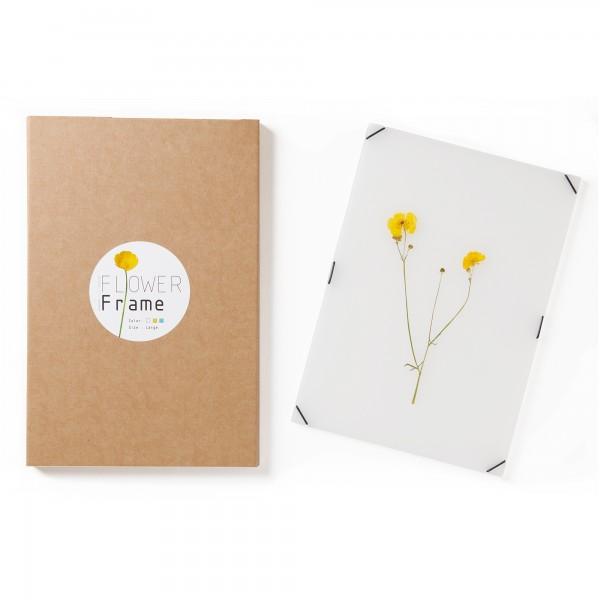 Blumenrahmen . CARMELA BOGMAN . Din A5